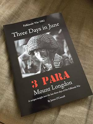 Parachute Regiment Mount Longdon Falklands, Three Days in June, Airborne, helmet