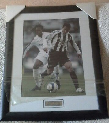 Newcastle united / Nobby Solano signed picture.