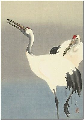 Japanese Woodblock Art Two Cranes Ohara Koson Canvas Print FRAMED