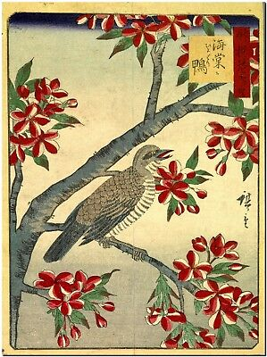 Japanese Woodblock Art Bulbul Bird and red flowers Canvas Print poster FRAMED