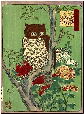 Japanese Woodblock Owl and Chysantheums Canvas Print Poster FRAMED