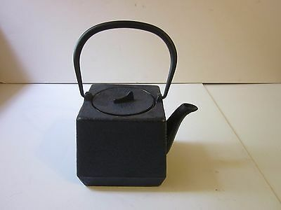 Chinese Cast Iron Teapot Asian Blue Tea Pot