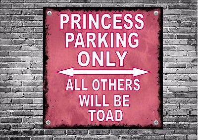 No Parking Sign Princess Parking  Design Metal Sign Novelty Joke Parking Sign