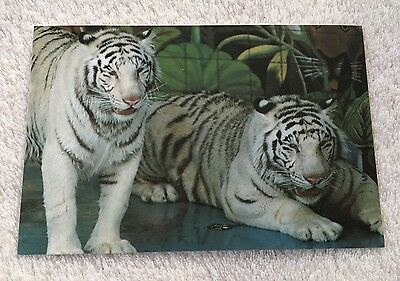 Siegfried and Roy Mirage Hotel Las Vegas Nevada Postcard White Tigers 1995