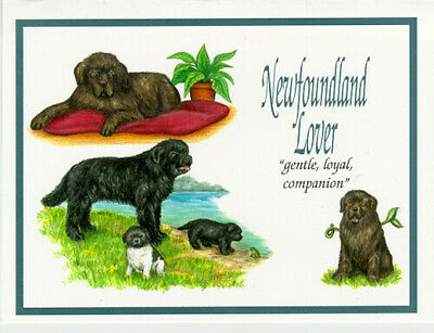 Newfoundland Lover NoteCards Note card Box of 10