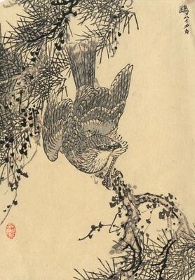 Japanese Mid 20Th Century Japanese Woodblock - Studie Eines Vogels