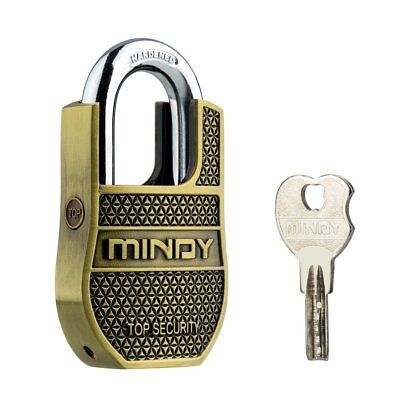 Mindy Heavy Duty Padlock With Keys Unique Style Special Chains Lock,1-Pack High