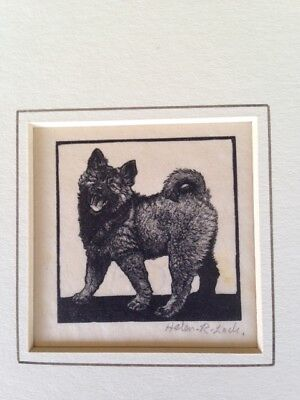 Antique Etching Print 1930's Keeshond Puppy Dog SIGNED by Helen R. Lock