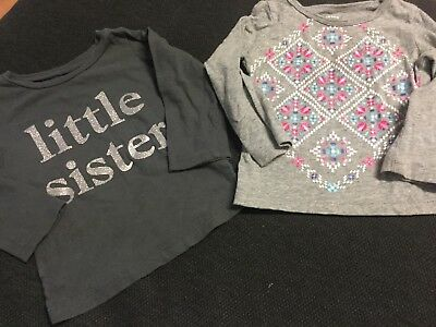 Baby Girl 18 Months Longsleeves Shirts Carters Fall Winter Clothes