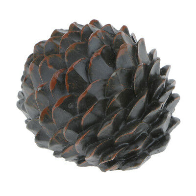 House Home Hide A Key Case Pine Cone Box Safe Spare Key Cash Holder Storage