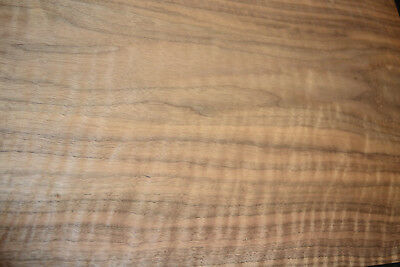 Walnut Raw Wood Veneer Sheets  14.5 x 42 inches 1/42nd thick            r7719-36