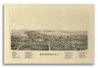 1892 Caledonia New York Vintage Old Panoramic NY City Map - 20x30