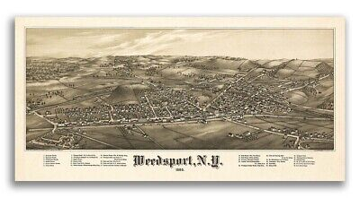 1885 Weedsport New York Vintage Old Panoramic NY City Map - 12x24