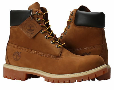 NWB Grade School Timberland Field Boot Chocolate Nubuck Green TB016937