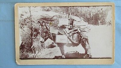 1890's Era Miners Pack Burro Outfit Cabinet Card Photograph-Dynamite Case-Tools