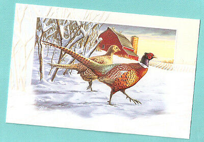 Pheasant Pair Embossed Christmas Cards Box of 16 by Darrell Bush