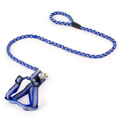 Xs Tiny Dog Harness And Lead Teacup Mini Puppy Chihuahua Rabbit Cat Toy Uk Blue