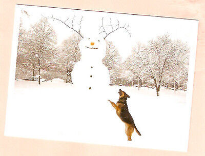 German Shepherd and Snowman Snow Christmas Cards Box of 10