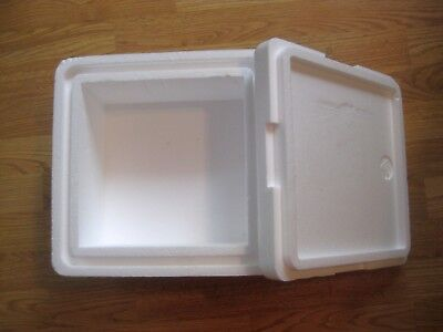 Small insulated styrofoam box, shipping, mailing container, carton, cooler