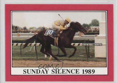 1991 Horse Star Kentucky Derby #115 Sunday Silence MiscSports Card