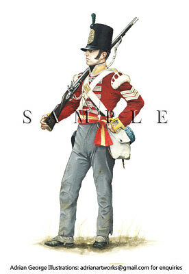 Napoleonic Print: Britain Sergeant 9th 'East Norfolk' 1810