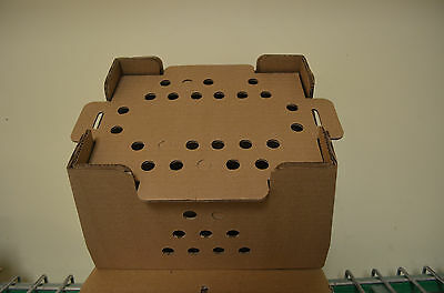 10 Pack of 25 Count Baby Chick Shipping Boxes with  Lids. USPS Approved!
