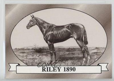 1991 Horse Star Kentucky Derby #16 Riley MiscSports Card