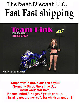 Team Pink Paddock Girl  American Diorama Resin Figure Only  1:18 Sexy Girl