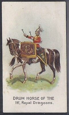 Wills United Services-Drum Horses- 1St Royal Dragoons