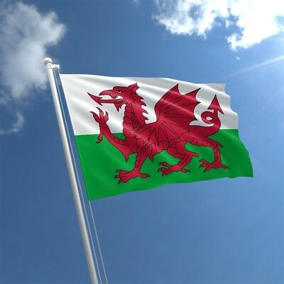 WALES WELSH LARGE DRAGON FLAG 5X3FT Rugby 6 Nations Football St Davids Day Cymru