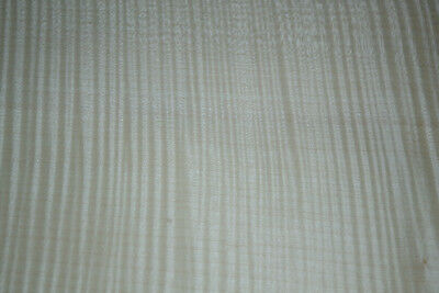 Curly Maple Raw Wood Veneer Sheets 11.5 x 27 inches 1/42nd               d8711-7