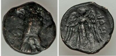 Ancient Greece 4th-3rd century BC Corcyra AE- Eagle / Nike