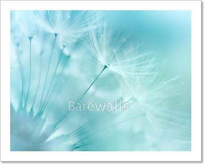 Feather On Water Art Print Home Decor Wall Art Poster E