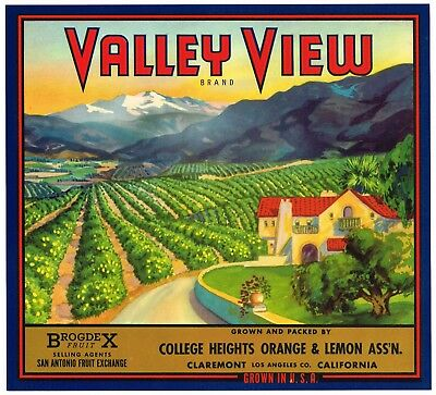 Orange Crate Label Valley View Claremont College Height Original Vintage Orchard