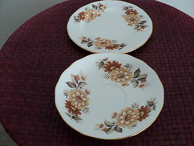 Queen Anne Saucer and Side Plate Bone China Brown Floral design. 2 items.