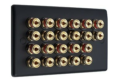 11.0 AV Audio Speaker Wall Face PlateMatt Black 22 Gold Binding Posts Non-Solder