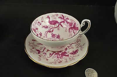 Coalport Pink Ciaro ?  Cabinet Tea Cup And Saucer Birds Plants Etc 1
