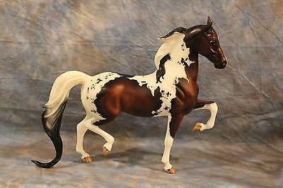 Breyer  Jah  Connoisseur 2010 Pandora With Coa  Only 350 Made Gorgeous
