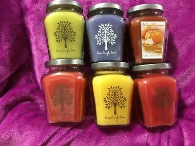 Home Interiors /Celebrating Home #1 Set Of 6 Variety Candles See Pictures