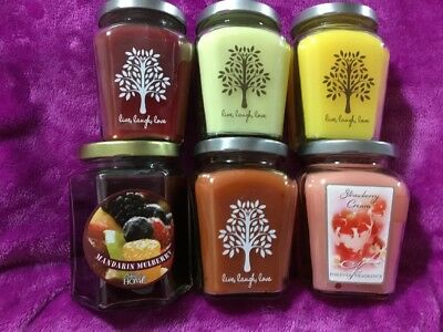 Home Interiors /Celebrating Home # 8 Set  Of 6 Variety Candles See Pictures