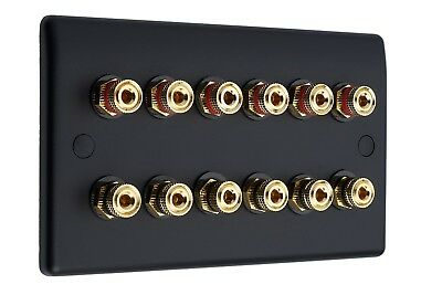 6.0 Audio AV Speaker Wall Face Plate Matt Black 12 Gold Binding Posts Non-solder