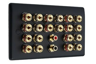 10.2 Audio AV Speaker Plate Matt Black Gold 20 Binding Posts + 2 RCA NON SOLDER