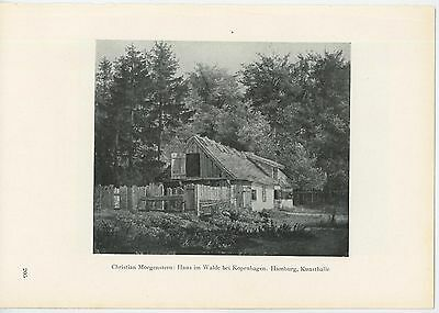 Antique House In The Woods Rustic Country Home Forest Trees Fence Gate Old Print