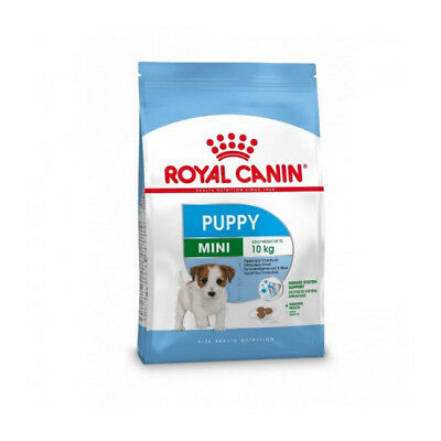 Croquettes Royal Canin Mini Junior Sac 8 kg