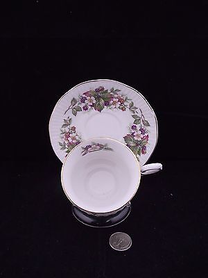 White Floral Queen's Rosina China Wild Flowers Cabinet Tea Cup And Saucer