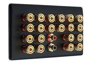 10.2 Matt Black Speaker Wall Face Plate 20 Gold Binding Posts + 2 RCA Sockets