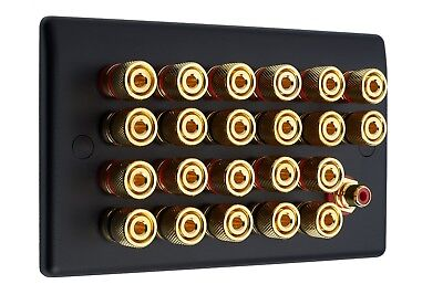 11.1 Matt Black Speaker Wall Face Plate 22 Gold Binding Posts + 1 RCA Socket