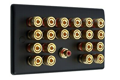 10.1 Matt Black Speaker Wall Face Plate 20 Gold Binding Posts + 1 RCA Socket