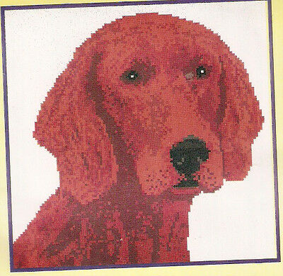 Irish Red Setter Head Study Counted Cross Stitch Complete Kit