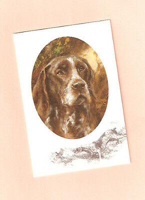 German Shorthaired Pointer Notecards Note Card  by Mick Cawston Pack of 5